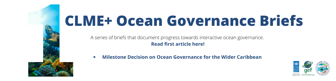 """More than 20 countries and 14 organizations convened to lay the foundations for a regional """"ocean governance"""" Coordination Mechanism."""