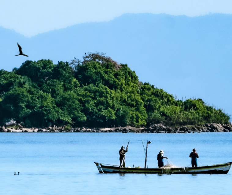 pescadores brazil min